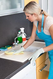 Domestic Cleaning Agencies